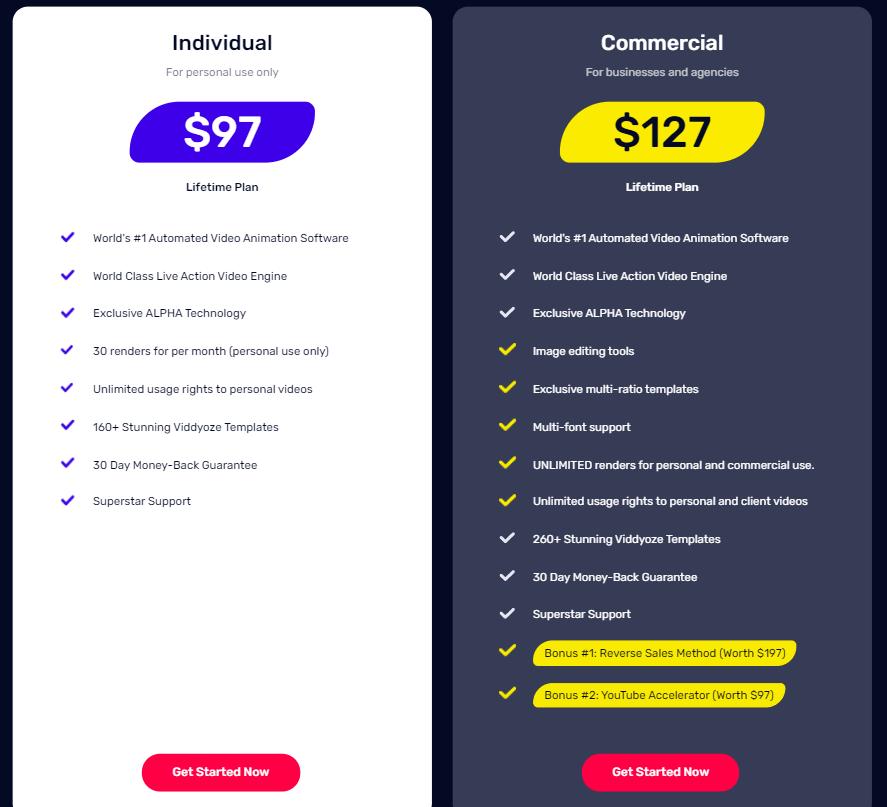 Viddyoze Pricing Plan